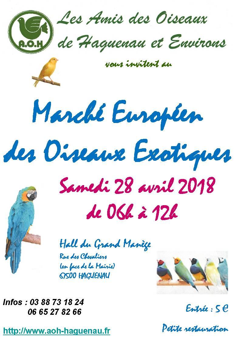 Marché européen aux oiseaux exotiques