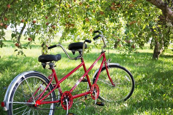 Balade Vélo Tandem et Visite Sensorielle