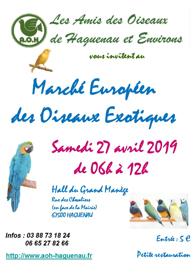 Marché européen des oiseaux exotiques