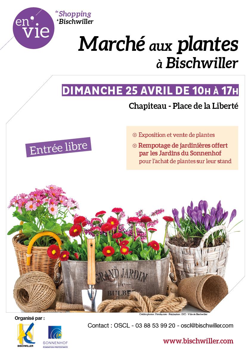 Marché aux plantes à Bischwiller