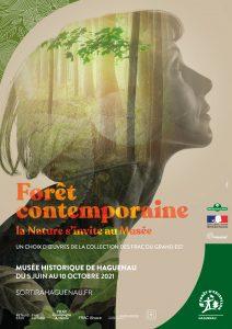 Visite guidée de l'exposition « Forêt contemporaine, la Nature s'invite au Musée »